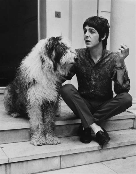puppy singer 1960 martha paul mccartney photo things 11 pets that influenced rock and pop