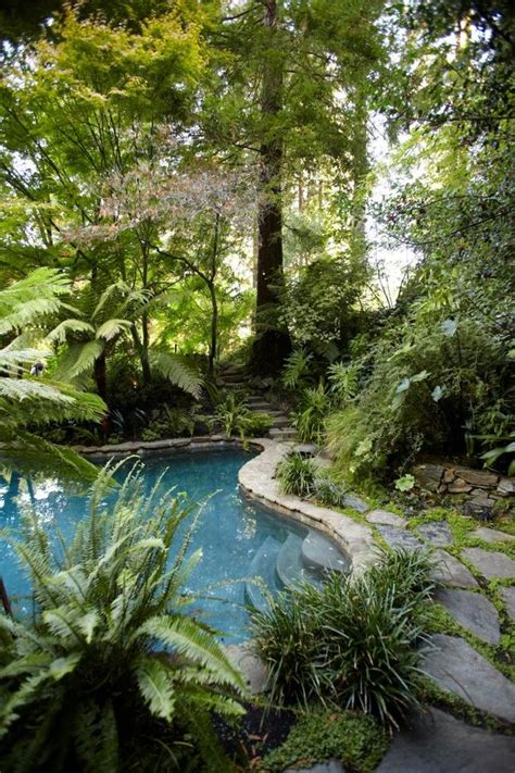 Jungle Backyard by Beautiful Backyards Inspiration For Garden The