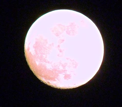 Moon Pink 301 moved permanently