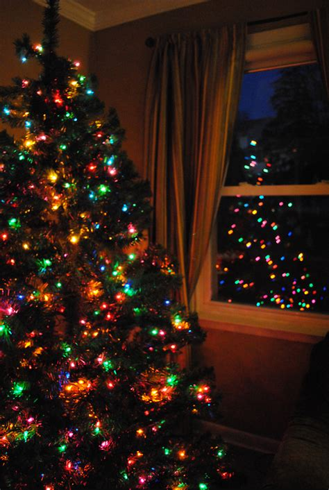colorful christmas tree pictures photos and images for