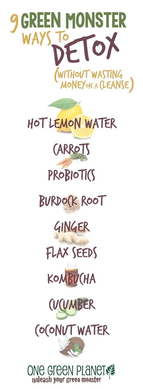 Detox Plant Based Diet by Best 25 Plant Based Diet Plan Ideas On Plant