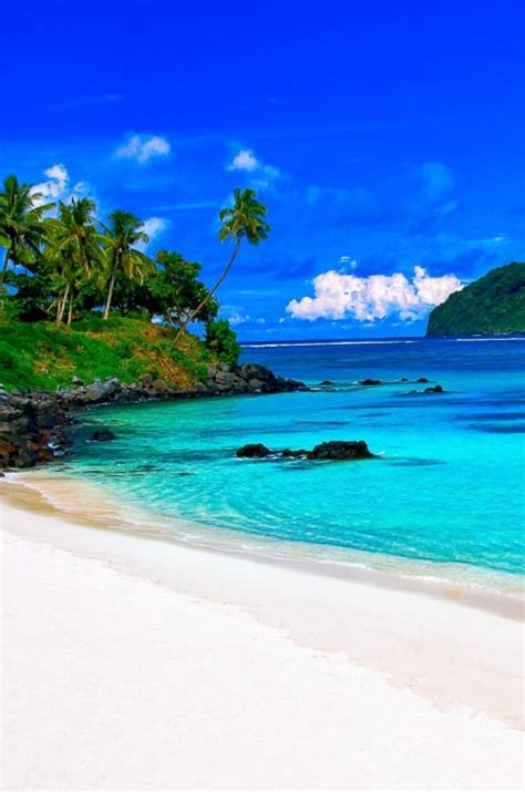 tropical island paradise 25 best ideas about tropical paradise on pinterest