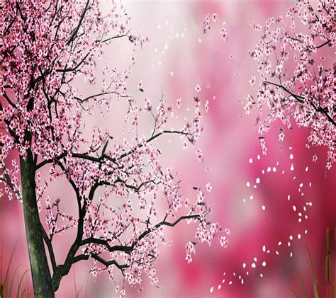 lovely like blossom cute gt 872 best cute wallpapers 3 images on pinterest