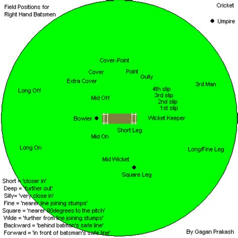 diagram of cricket field labeled diagram of a cricket cricket cycle diagram