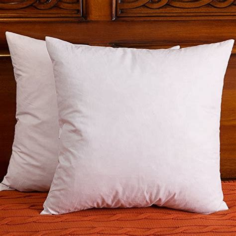 what is the best throw pillow insert and cover out there