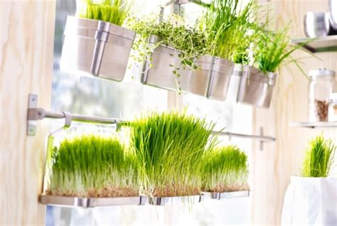 grow herbs in kitchen 12 creative indoor garden ideas for your home decor
