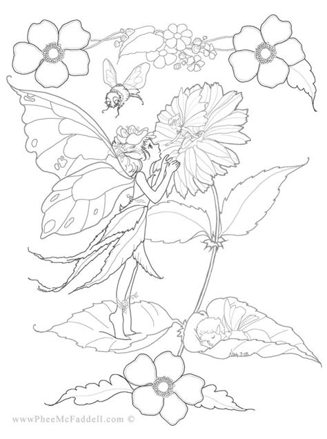 Flower Fairies Coloring Page B G Club Pinterest Flower Fairies Coloring Pages
