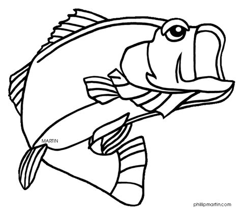 bass fish coloring pages free bass fish coloring pages clipart panda free clipart images