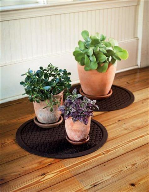 floor protectors for plants 1000 images about garden on pinterest entrance mats