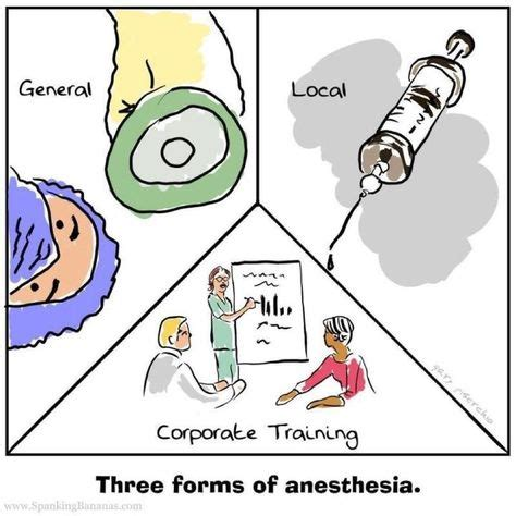 Herbs To Detox Anesthesia by Anestesia On Humor Nurses And Shift