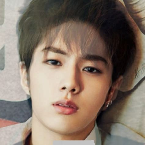 blackpink ugly pann bts jin and infinite l morph face is adorable