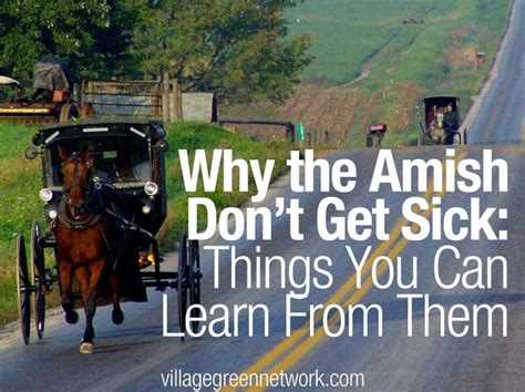 why the amish dont get sick things you can learn from why the amish don t get sick health pinterest