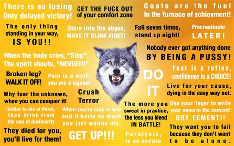 Courage Wolf Meme - courage wolf quotations pinterest