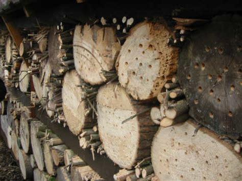 Sehr Kleine Gärten by Wildbienenwand Im 1 Jahr