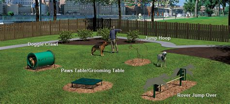 backyard agility course novice dog obstacle course