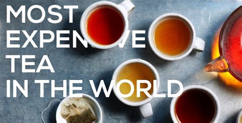 top 5 most expensive teas in the world top10zen most expensive tea in the world top 5 alux com