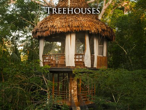 Pete Nelson Treehouses Of The World - treehouse lodge peruvian amazon