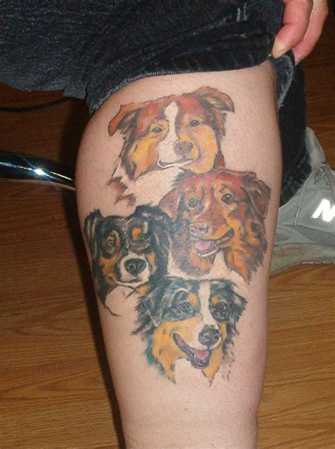 australian shepherd tattoo australian shepherds by shadowtat on deviantart
