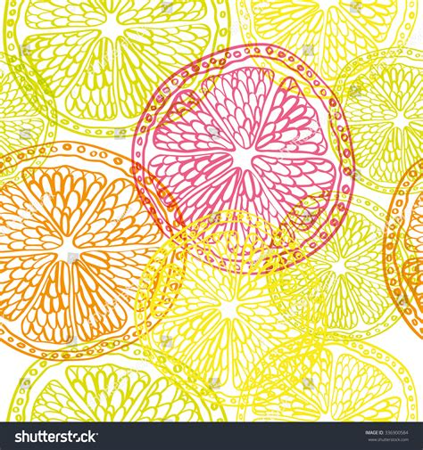 design element citrus orange lemon lime grapefruit sliced vector stock vector