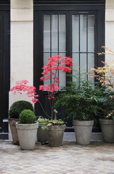 Pflanzen Im Haus 4508 by Herbstgartenideen