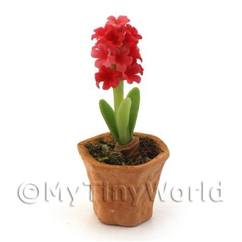 dolls house flowers dolls house miniature flowers and plants dolls house miniature red hyacinth in a