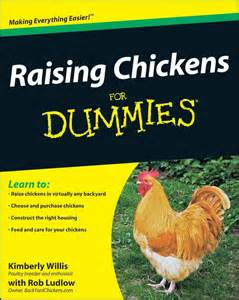 Raising Backyard Chickens Raising Chickens For Dummies Book All You Need To In One Book Backyard Chickens