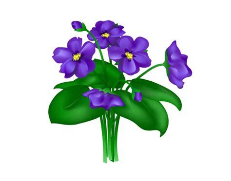 Sprei Fata No 1 Lavender Violet smart read the and lore of violets