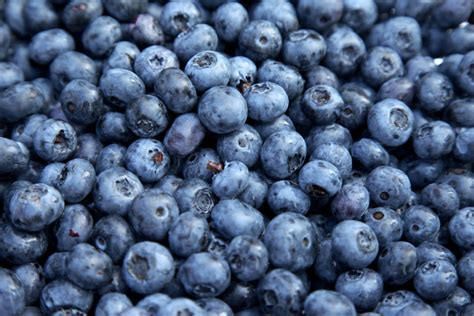 carbohydrates blueberries list of carbohydrates you ll the leaf nutrisystem