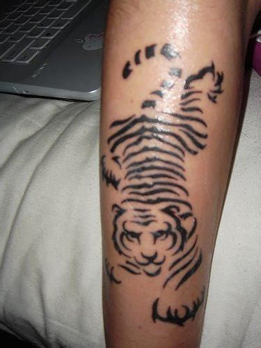 tribal stripes tattoo 12 white tiger tattoos to model me now