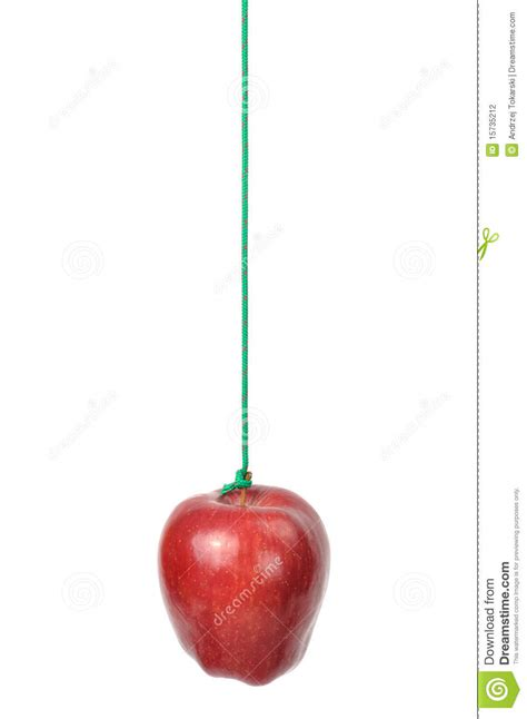 apple on a string stock photography image 15735212