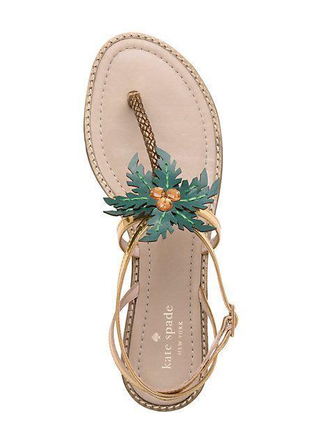 palm sandal palm tree sandals shoes shoes shoes trees