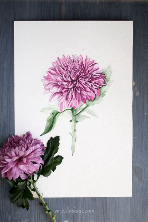 watercolor joy tattoo chrysanthemum watercolor illustration by limkna