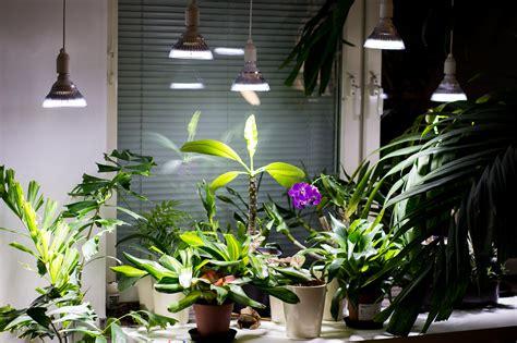 light led grow lights led  cfl lamps