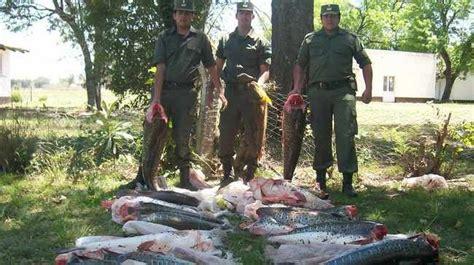 policia de santa fe asta cuando son las inscripciones 2016 2017 peces del paran 225 en peligro ecolog 237 a taringa