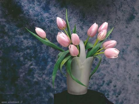 composizioni fiori recisi foto fiori recisi
