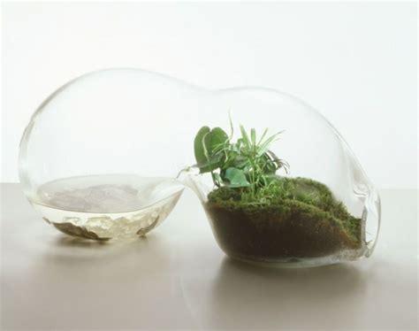 Mini Terrarium Selber Bauen 2156 by Terrarium Selber Bauen Ideen Und Inspirierende Beispiele