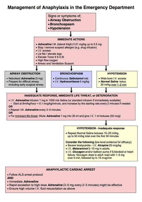 anaphylaxis flowchart anaphylaxis flowchart create a flowchart