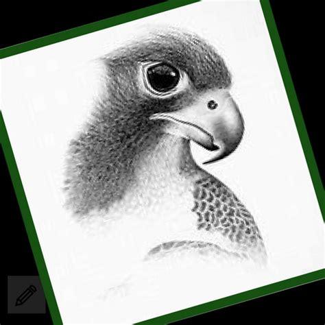 imagenes hechas a lapiz de animales im 225 genes de dibujos a lapiz de animales tiernos