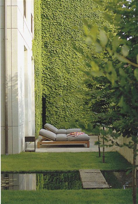 ivy and stone home on instagram 25 best ideas about ivy wall on pinterest what is black