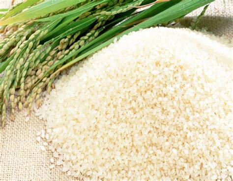 cara membuat nasi kuning beras ketan resep membuat nasi kuning special tiktok