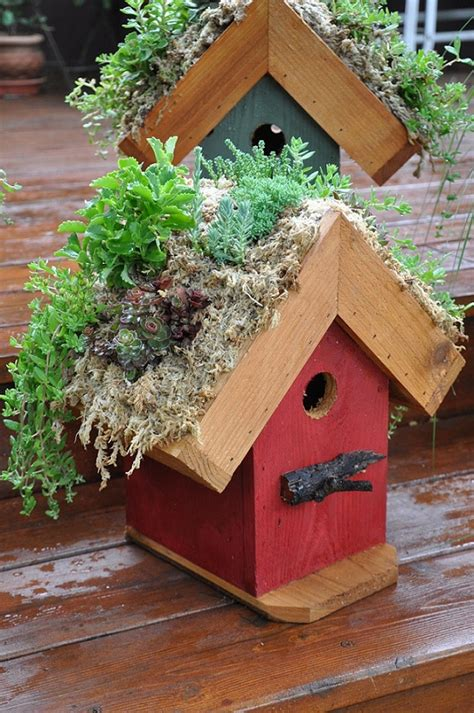 Birdhouse Planters living roof coops community chickens