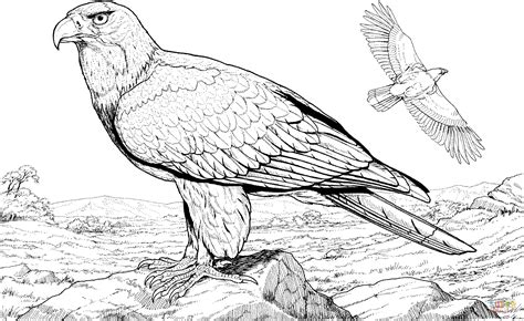 American Bald Eagle Coloring Online Super Coloring Bald Eagle Coloring Pages