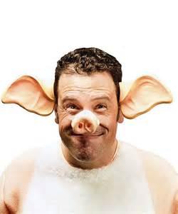 oreilles de cochon ax0042