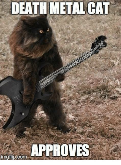 Metal Cats 25 best memes about metal cats metal cats memes