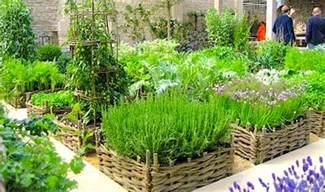 Herb Garden Plan herb gardening container gardening