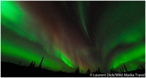 Northern Lights Tours by Alaska Travel Northern Lights Viewing Archives