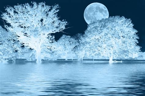 blue moon landscape photograph by david