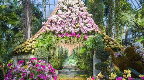 Botanical Gardens Orchid Show by Your Calendars For April S Events Times Square