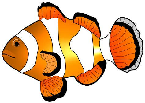 nemo clipart nemo fish clipart clipartxtras