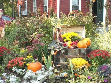 fall flowers for garden